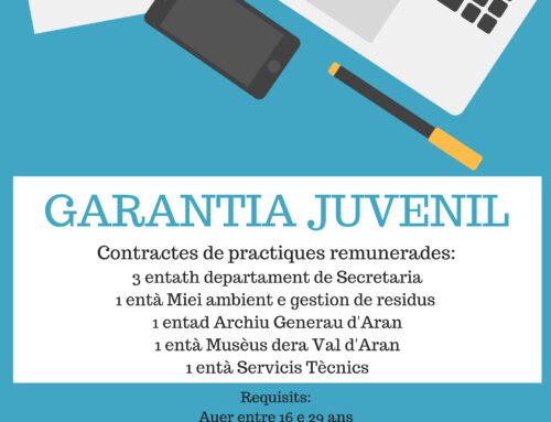 Contractes de practiques remunerades dera Garantia Juvenil